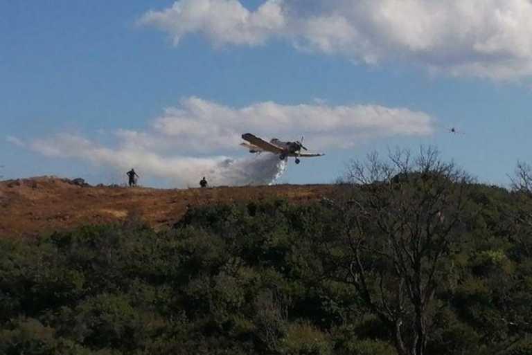 Ζάκυνθος: Πυρκαγιά σε δασική έκταση στο βουνό Σκοπός