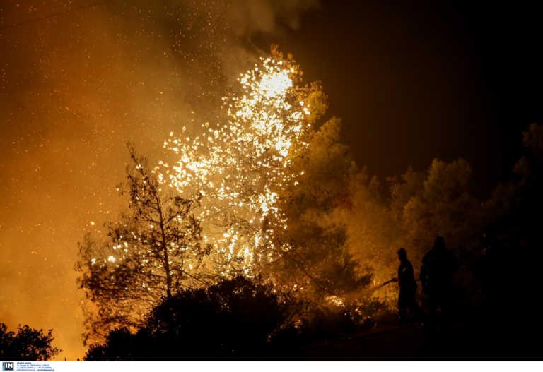 Μεγάλες πυρκαγιές απειλούν την Ευρώπη - Αυξημένος φέτος ο κίνδυνος