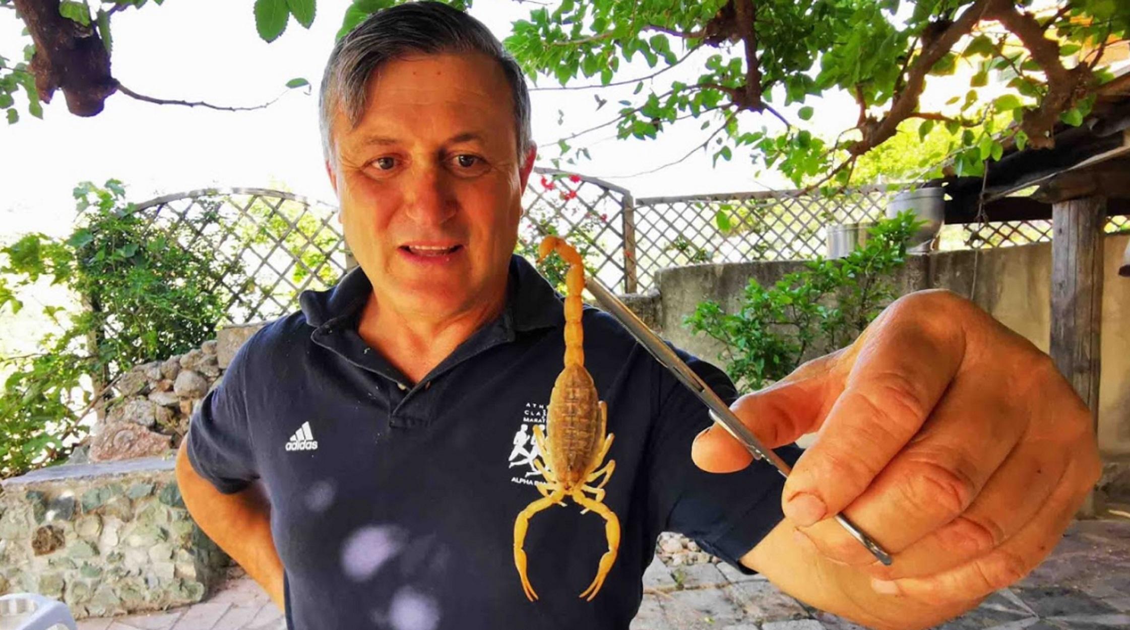 Ναύπλιο: Ο αγρότης που δεν φοβάται τους τρομερούς σκορπιούς (pics, video)