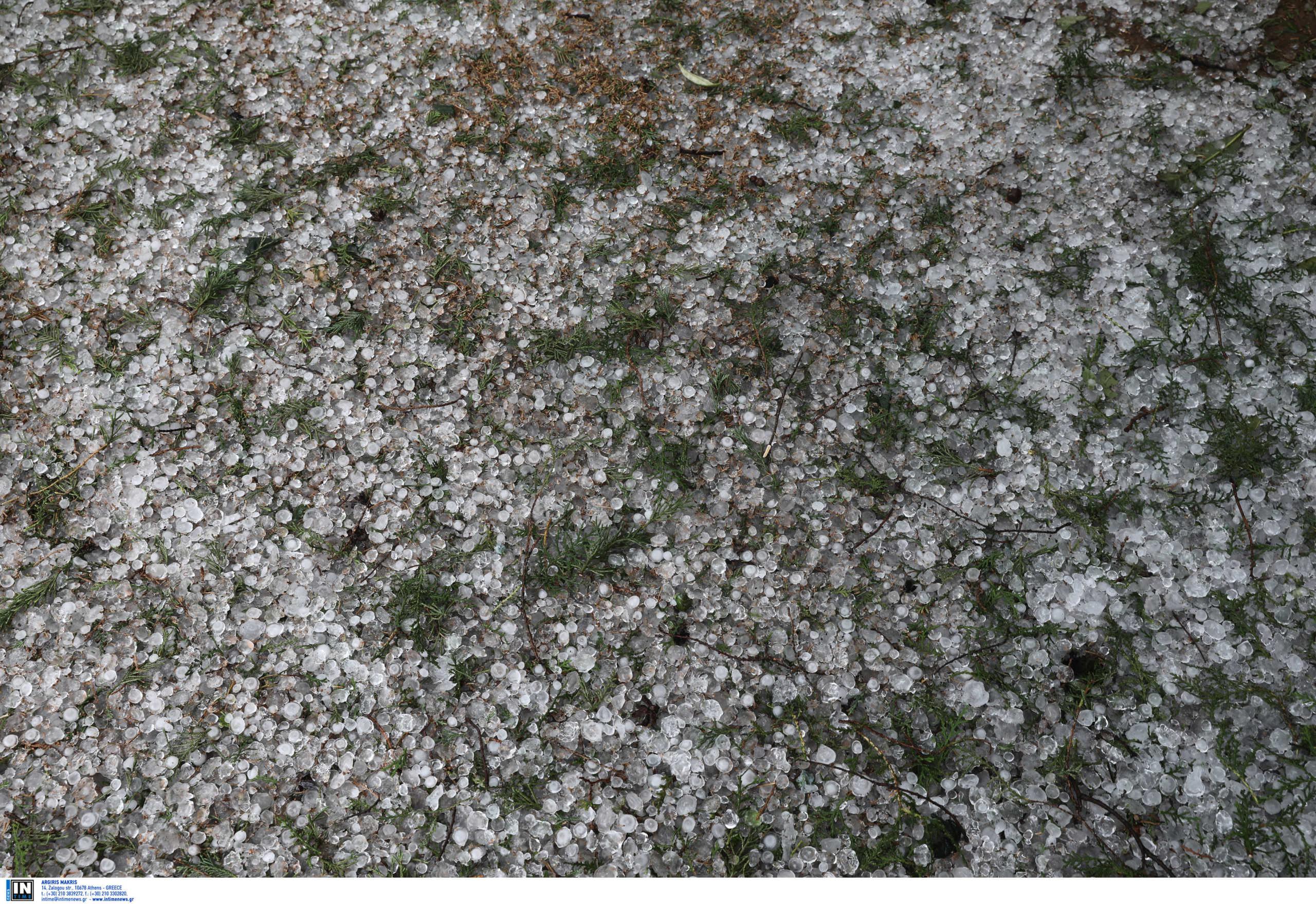 Καιρός – Τρίκαλα: Έπεσε χαλάζι σε μέγεθος καρυδιού (pics, vid)
