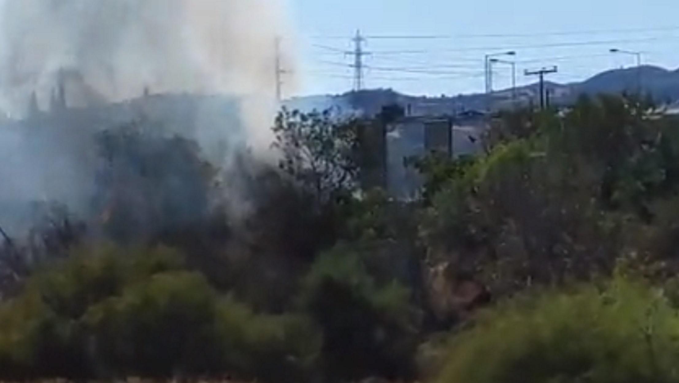 Φωτιές στους Αγίους Θεοδώρους Κορινθίας: Τρεις πύρινες εστίες ταυτόχρονα (pics, video)