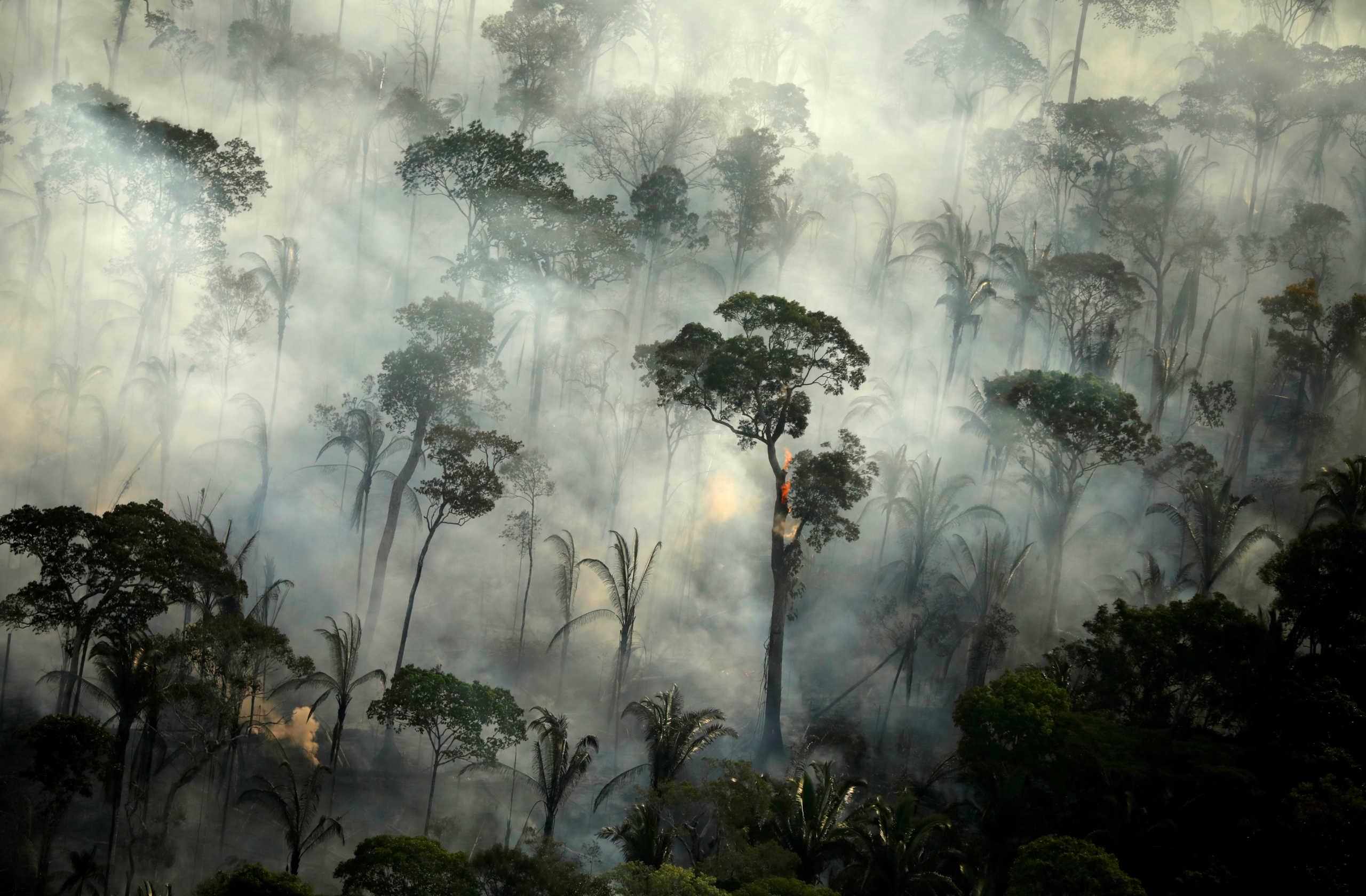 Βραζιλία: Ανησυχία για τον Αμαζόνιο! Φωτιές – ρεκόρ τον Ιούνιο