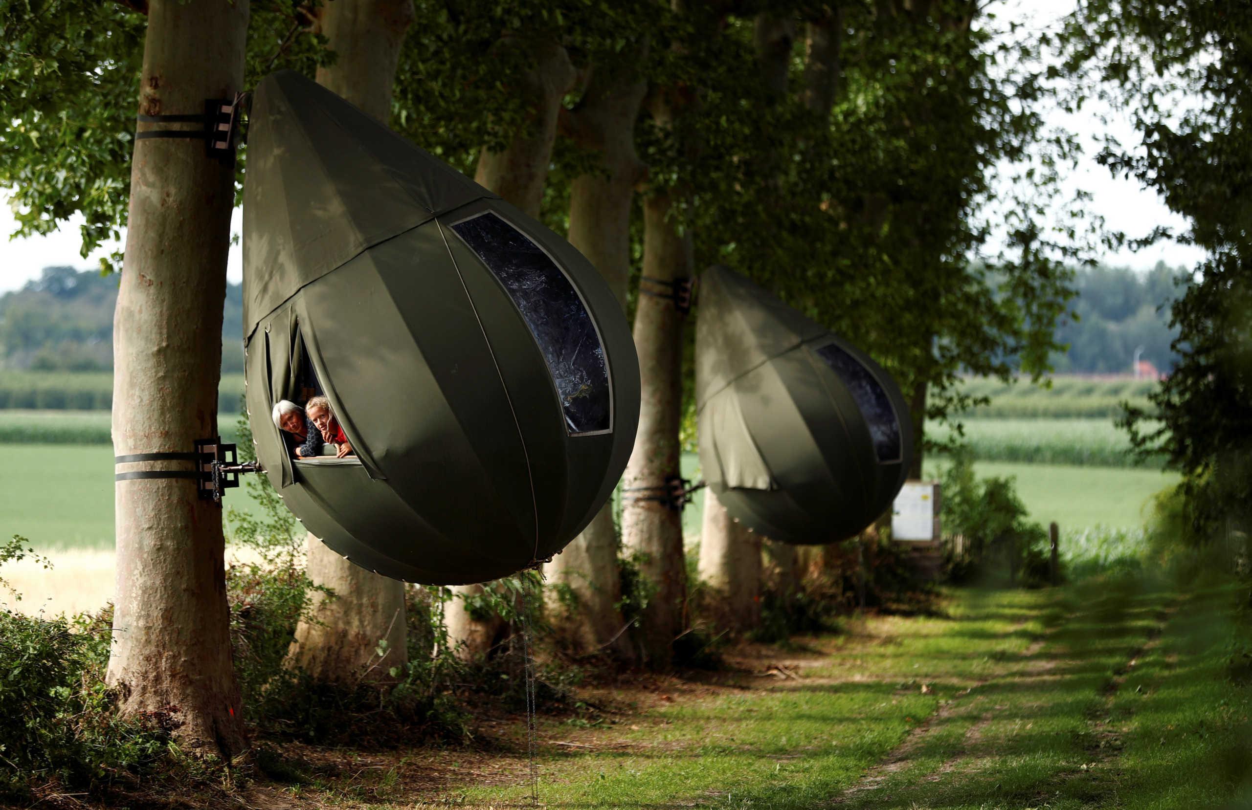 Βέλγιο: Νέα εμπειρία στις διακοπές! Σκηνή σε σχήμα δάκρυ που κρέμεται από δέντρο (pics)