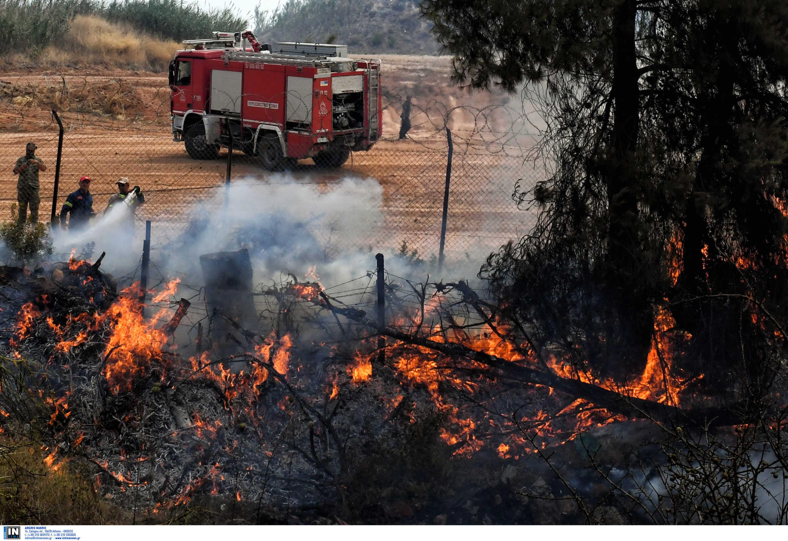 Σάπες: Σε εξέλιξη η μεγάλη πυρκαγιά – Επί τόπου ειδικό κλιμάκιο που ερευνά εμπρησμούς