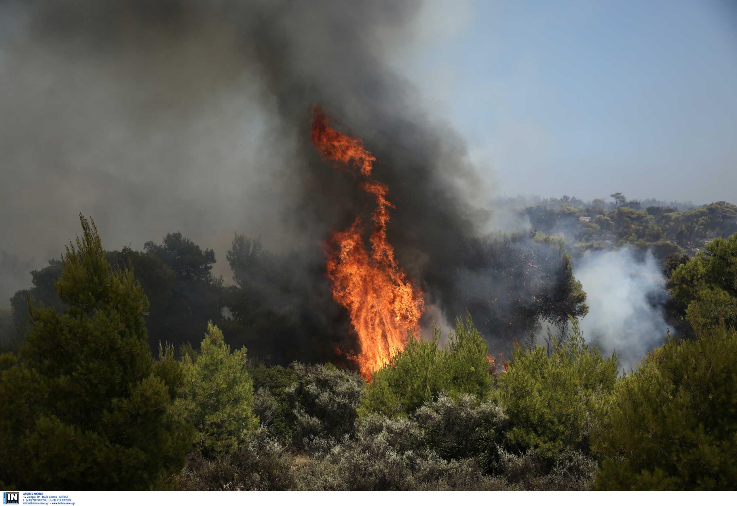 Φωτιά στον Ασπρόπυργο: Διακόπηκαν τα δρομολόγια του Προαστιακού