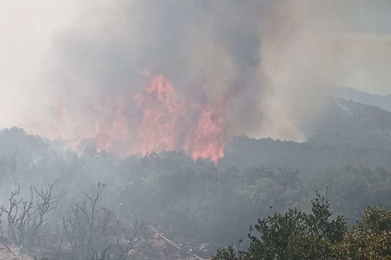 Πολύ υψηλός κίνδυνος πυρκαγιάς για αύριο Παρασκευή - Στο «κόκκινο» και η Αττική
