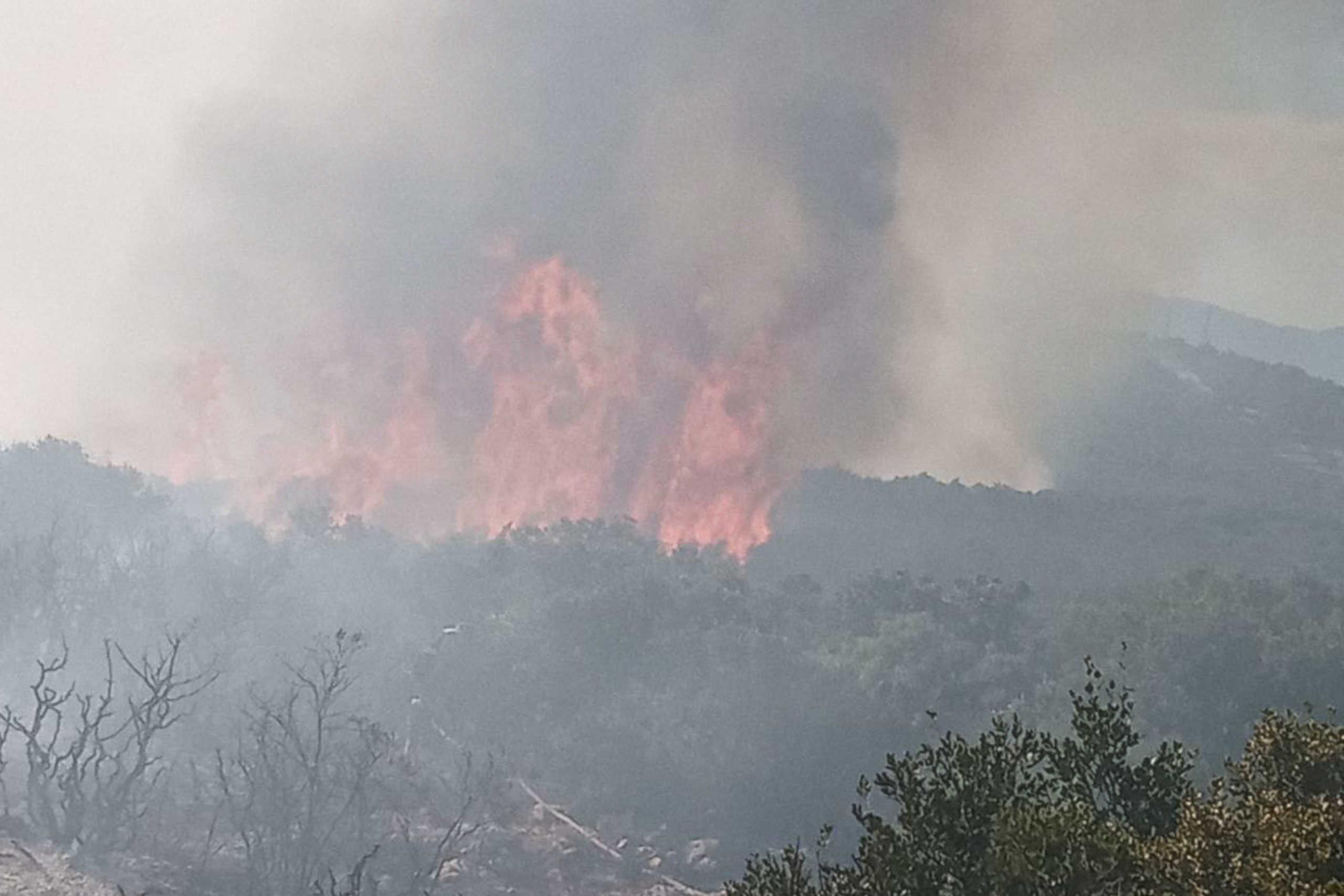 Αλεξανδρούπολη: Πυρκαγιά στην Κοτρωνιά Σουφλίου – Ισχυρές πυροσβεστικές δυνάμεις στην περιοχή
