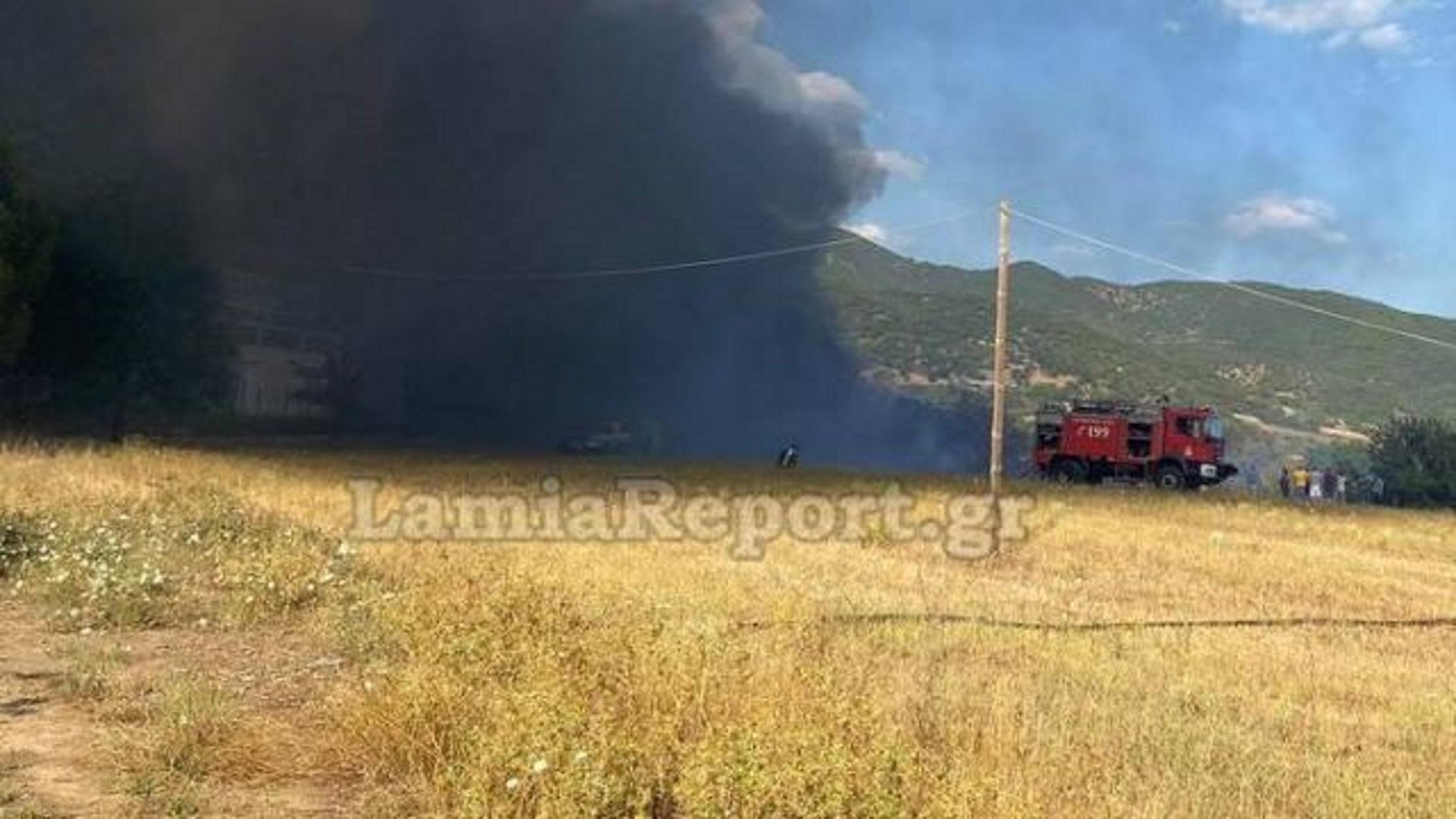 Φωτιά στη Φθιώτιδα: Σκοτείνιασε ο ουρανός στο Παλιούρι Μακρακώμης (pics)