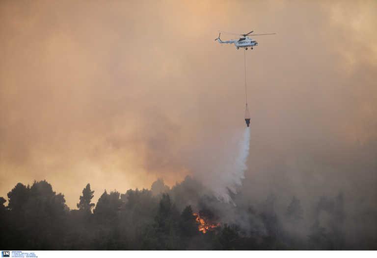Μεγάλη φωτιά στην Εύβοια (pics)