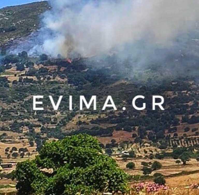 Κατσαρώνι Καρύστου: Νέες φωτογραφίες και βίντεο από τη μεγάλη φωτιά