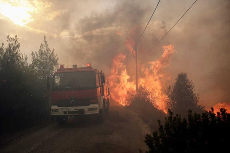 Φωτιά στο Μάτι: Ευθύνες στην Πυροσβεστική από μάρτυρες και κατηγορούμενους