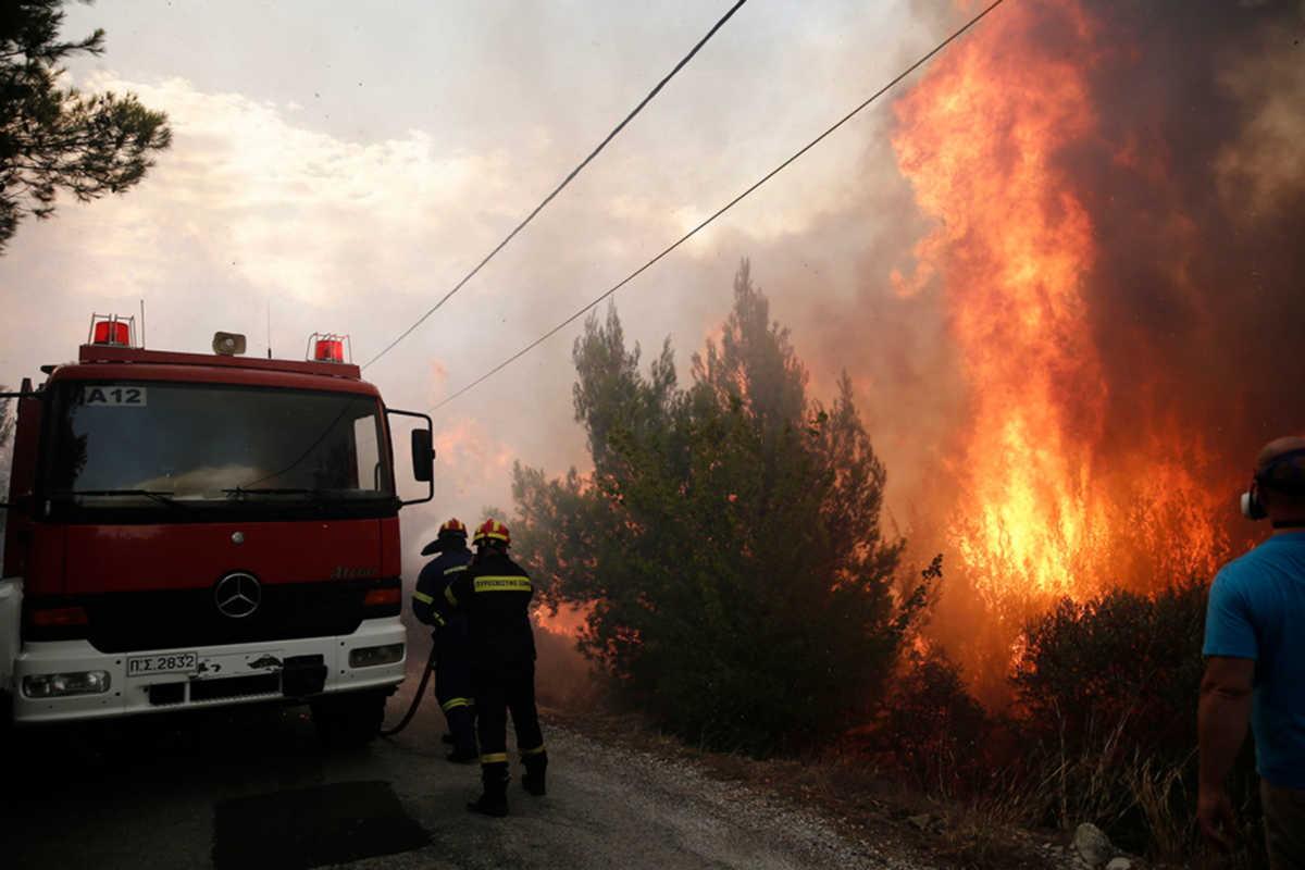 Πόρισμα κόλαφος για το Μάτι: Παρακολουθούσαν αμέτοχοι, Πόρισμα κόλαφος για το Μάτι: Παρακολουθούσαν αμέτοχοι τη φωτιά σαν τον Ξέρξη, Eviathema.gr | Εύβοια Τοπ Νέα Ειδήσεις