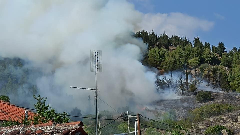 Λάρισα: Συναγερμός στην Ελασσόνα για δασική φωτιά! Οι εικόνες που τράβηξαν κάτοικοι χωριού (Φωτό)