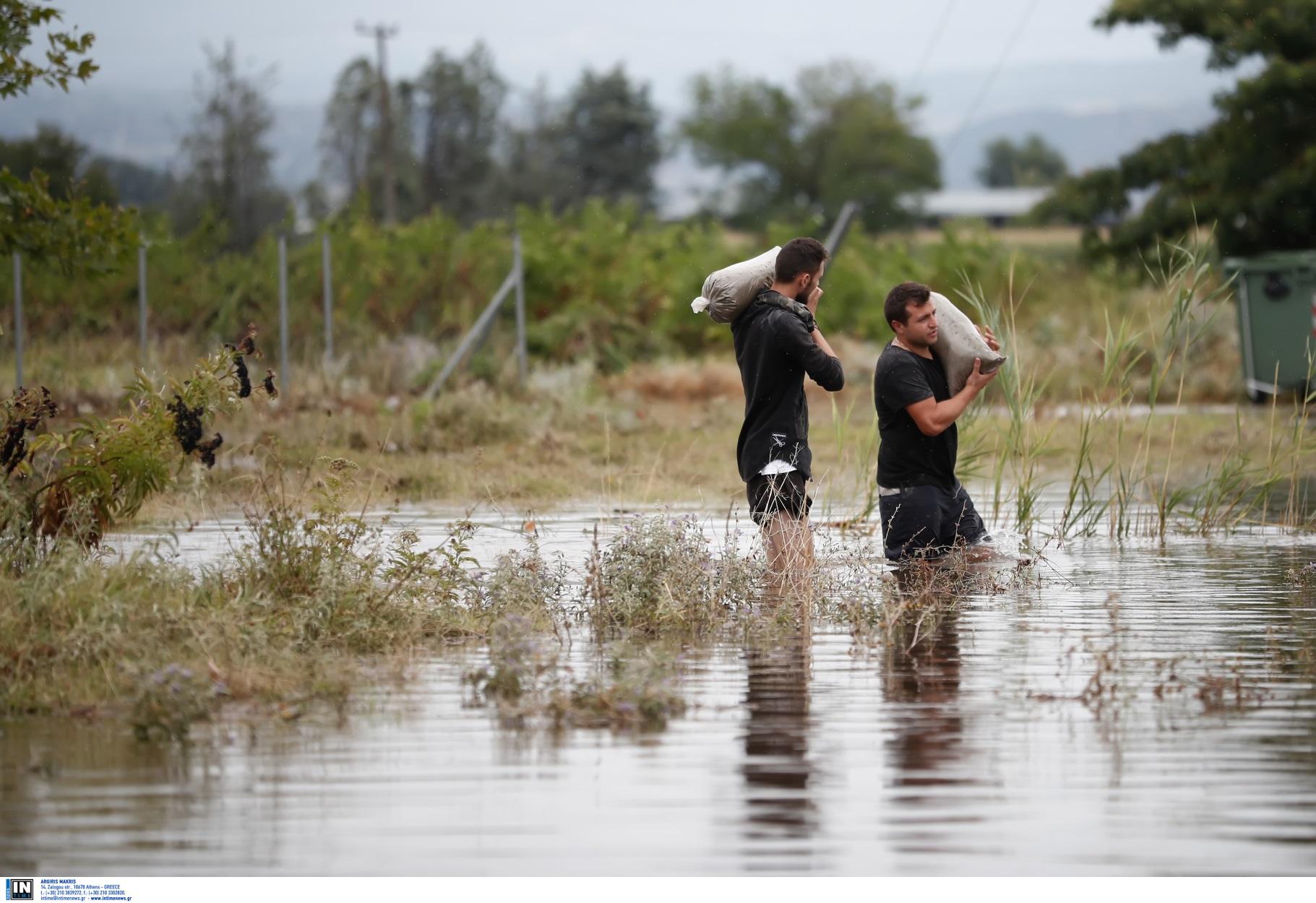 """Λαγκαδάς: Σε απόγνωση αγρότες και κτηνοτρόφοι από την επέλαση της """"Θάλειας"""" (pics)"""