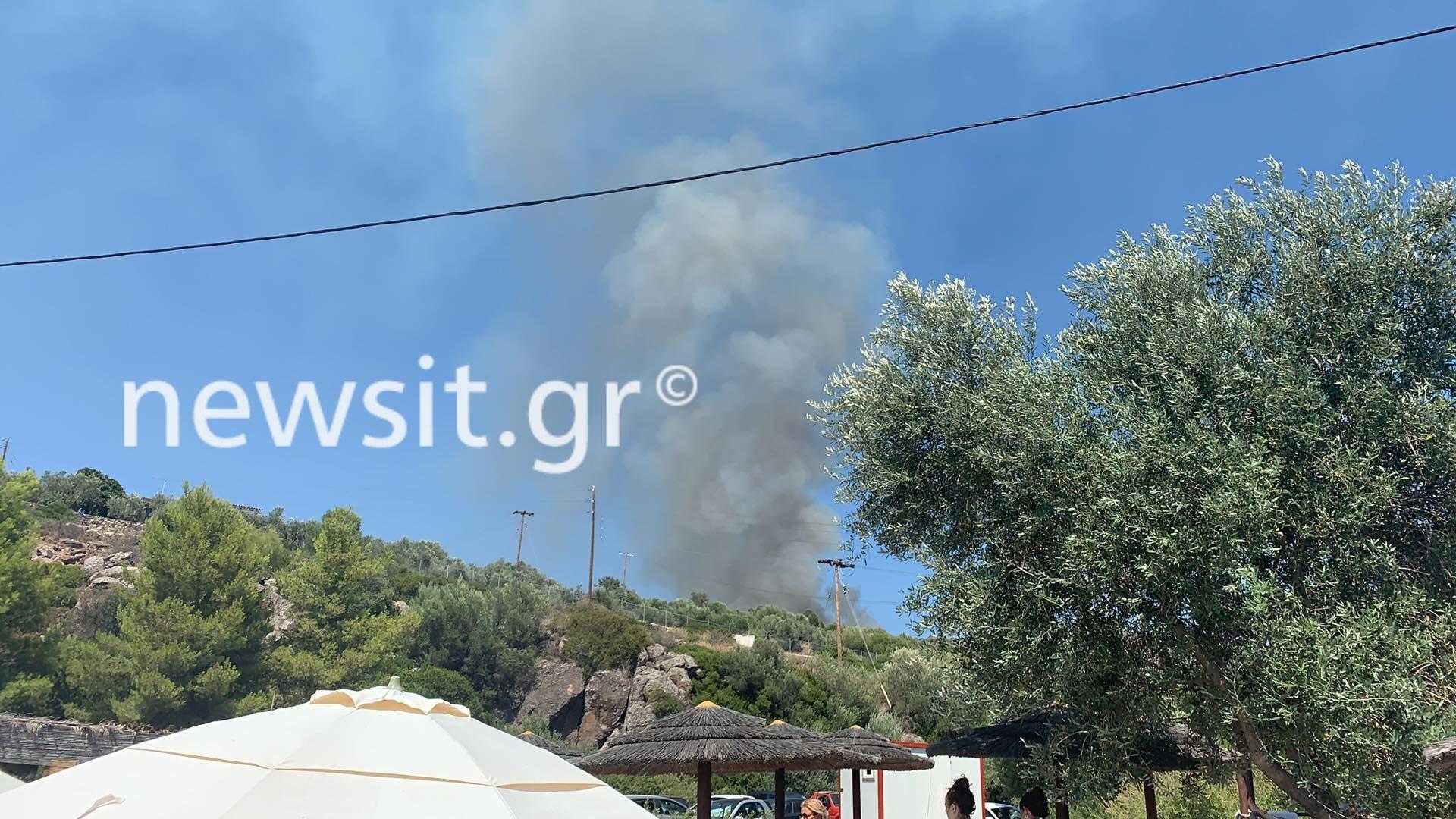 Φωτιά στην Αίγινα στην περιοχή Σφεντούρι