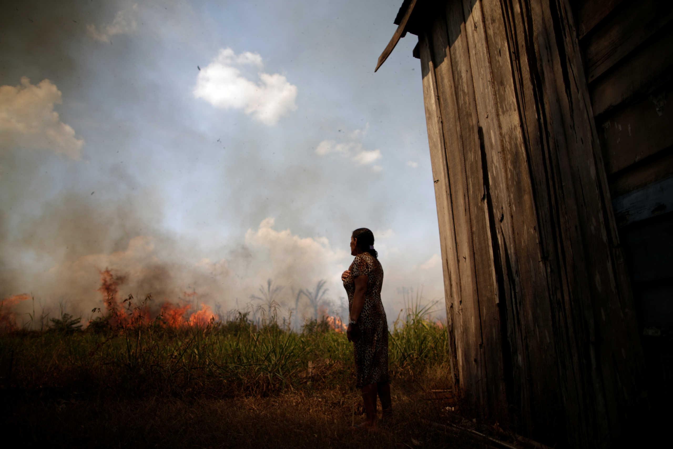 Βραζιλία: Ακραίοι καύσωνες ως το 2100 εξαιτίας της αποψίλωσης του Αμαζονίου