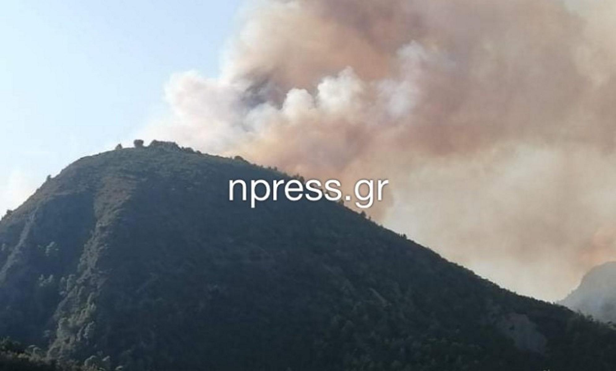 Φωτιά κοντά στη Ναύπακτο (video)