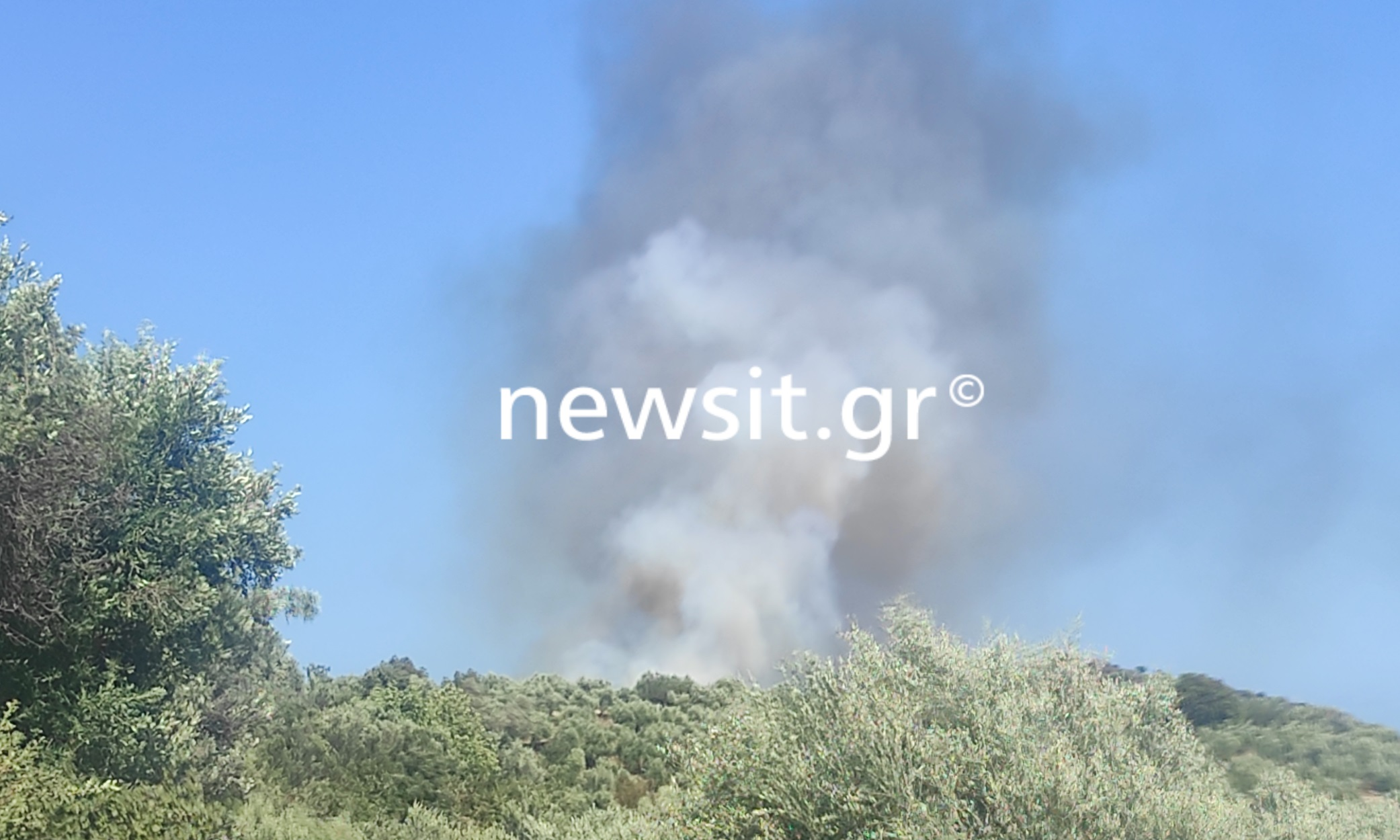 Φωτιά στην Ανατολική Μάνη: «Κάηκαν 56 σπίτια για μια ώρα δουλειά»