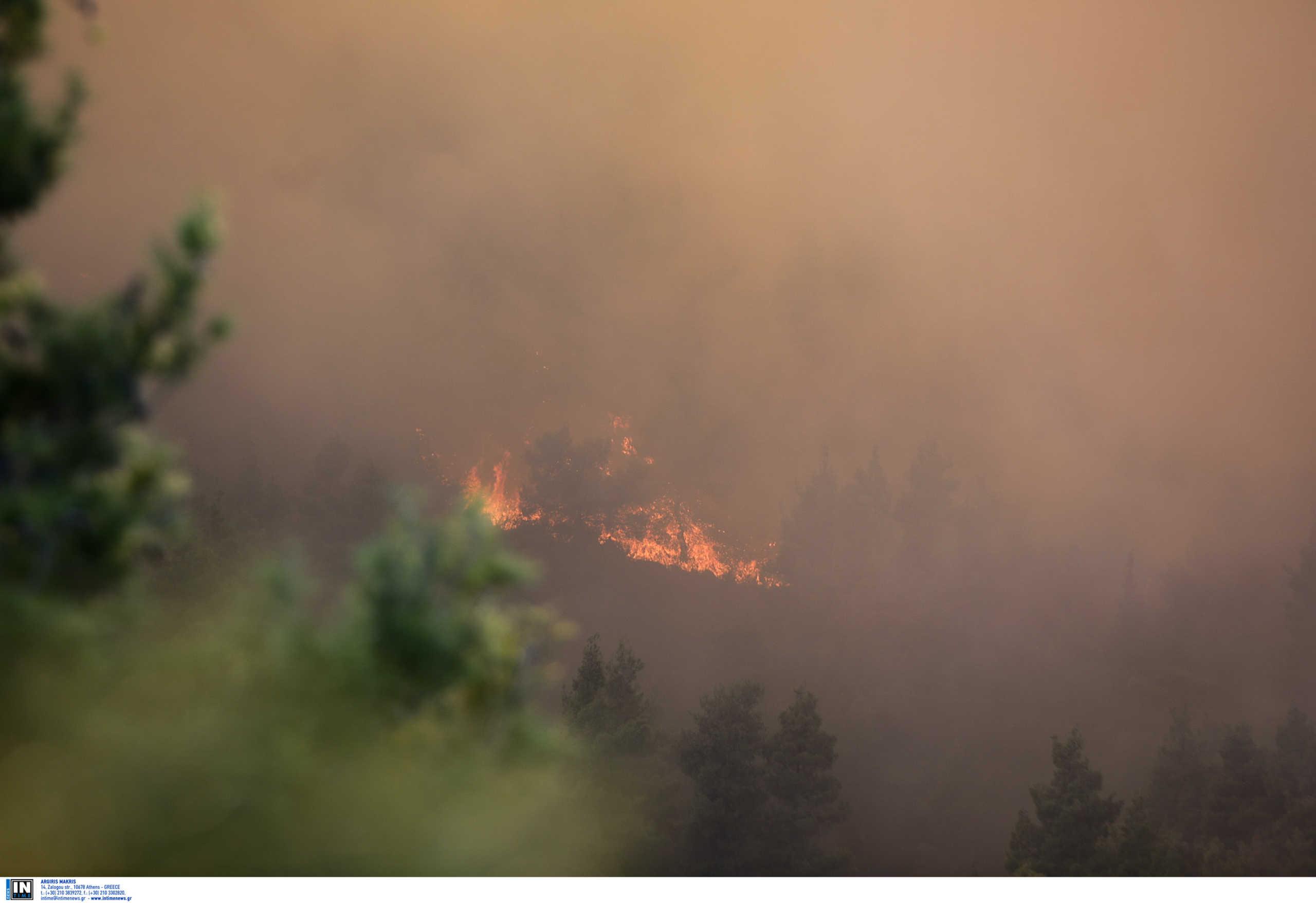 Πάτρα: Μαίνεται η φωτιά στην Άνω Καλλιθέα (video)