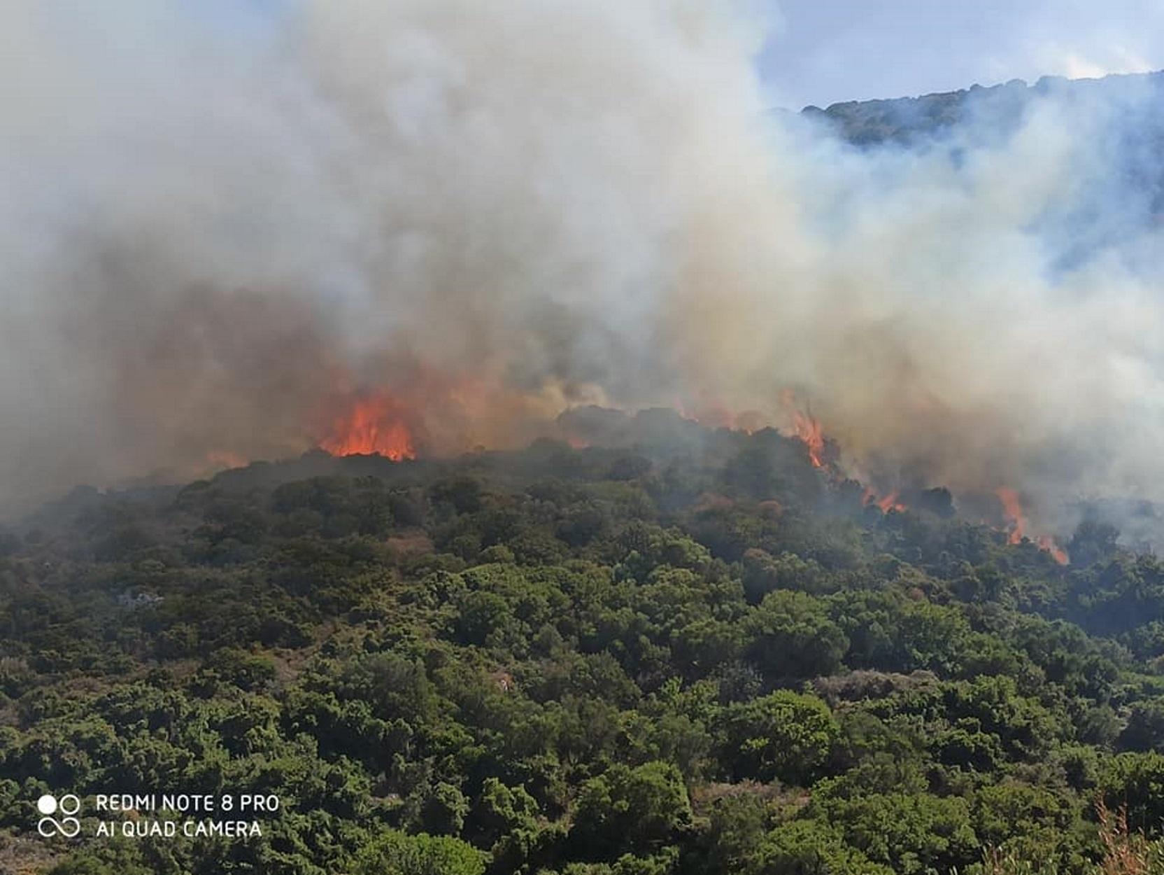 Φωτιά στα Κύθηρα: Μεγάλη επιχείρηση της πυροσβεστικής (pic)