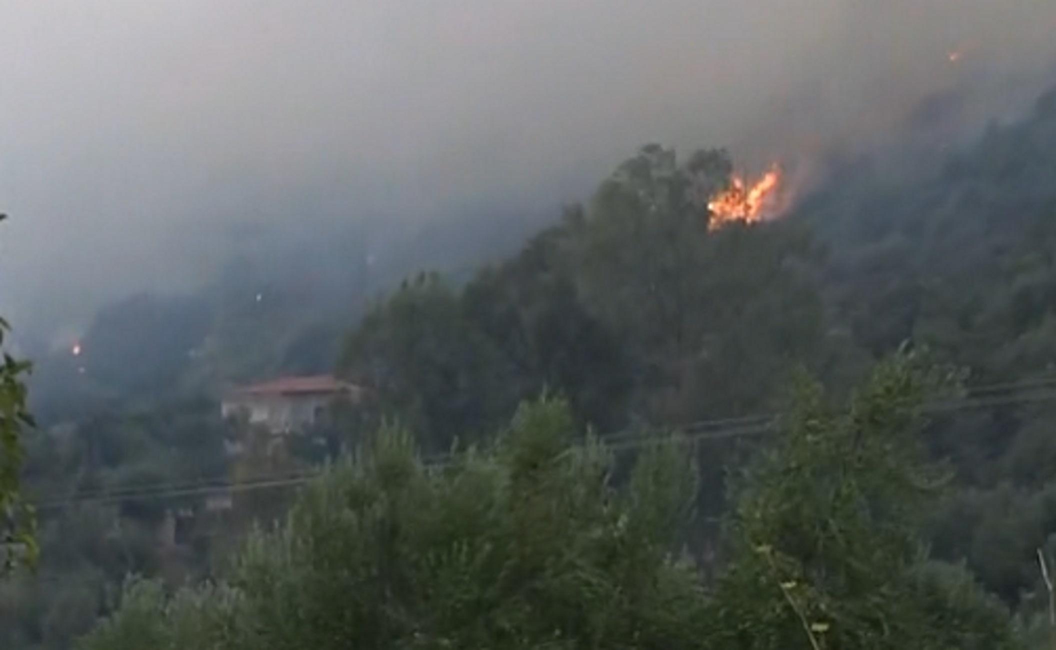 """Φωτιά στη Μάνη: Διάσπαρτες εστίες – Μήνυμα του """"112"""" στους κατοίκους"""