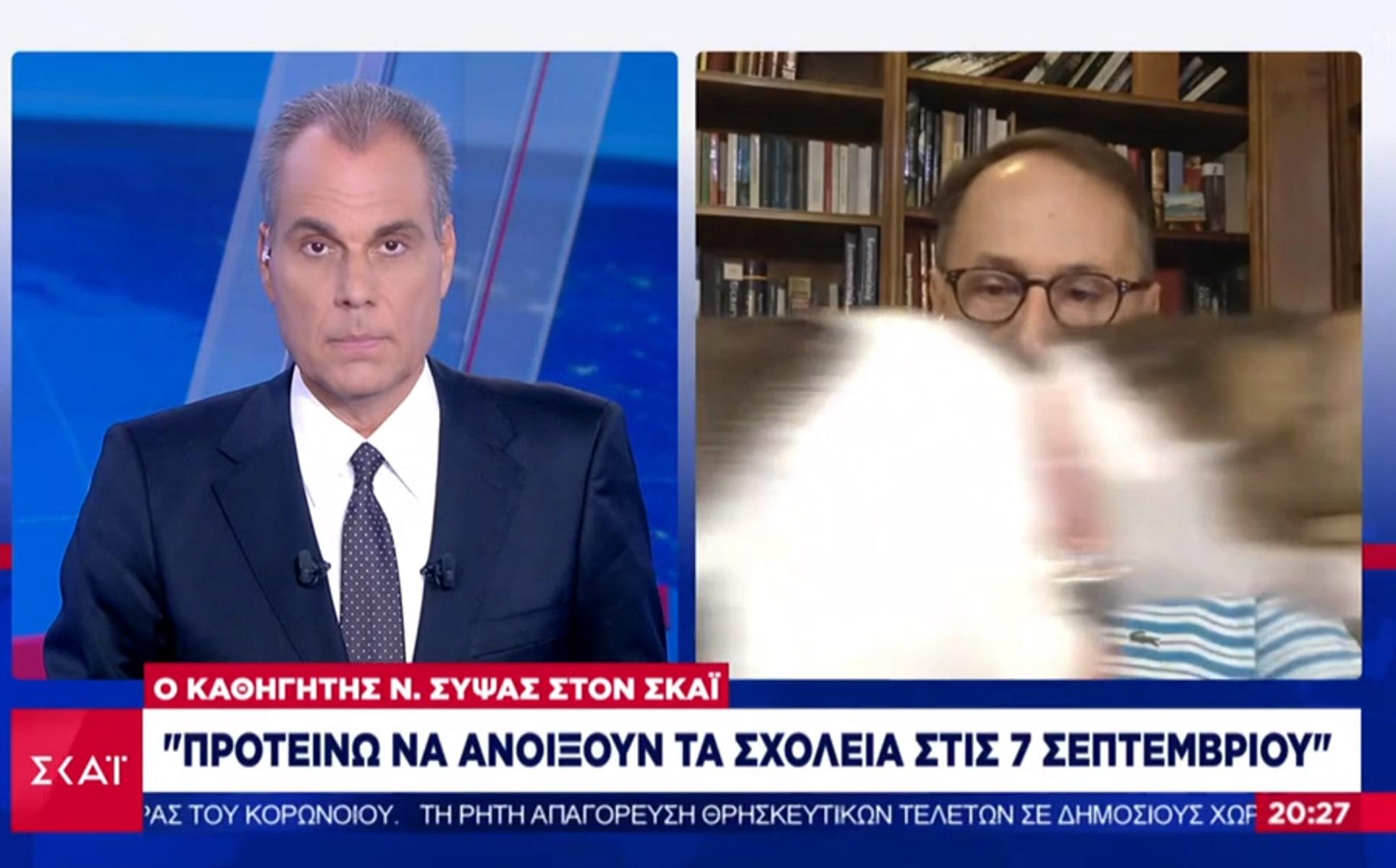 Ήθελε… δημοσιότητα η γάτα του καθηγητή Σύψα! Παρενέβη στη συνέντευξή του!