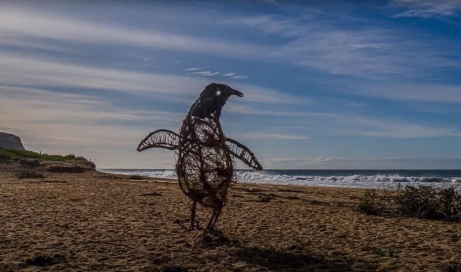 Πρωτοτυπεί καλλιτέχνης στην Αυστραλία – Φτιάχνει γλυπτά ζώα από ξύλα που ξεβράζει ο ωκεανός