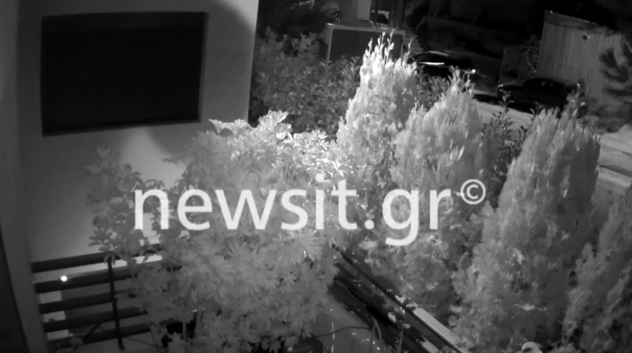 Λύγισε η Βικτώρια Καρύδα ακούγοντας το ηχητικό ντοκουμέντο από την στιγμή της δολοφονίας του Γιάννη Μακρή (video)
