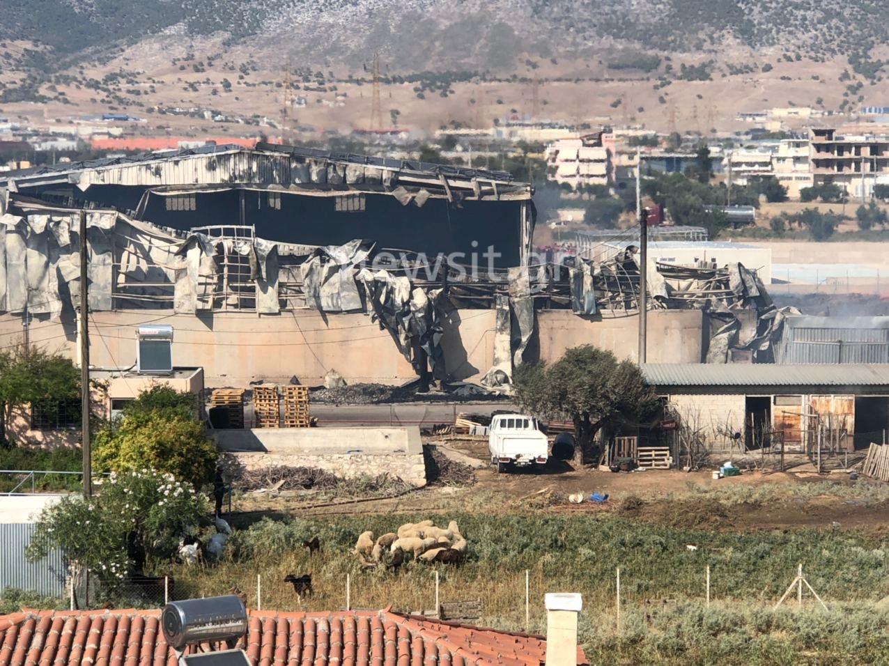 Εικόνες απόλυτης καταστροφής από την φωτιά στον Ασπρόπυργο (pics, video)