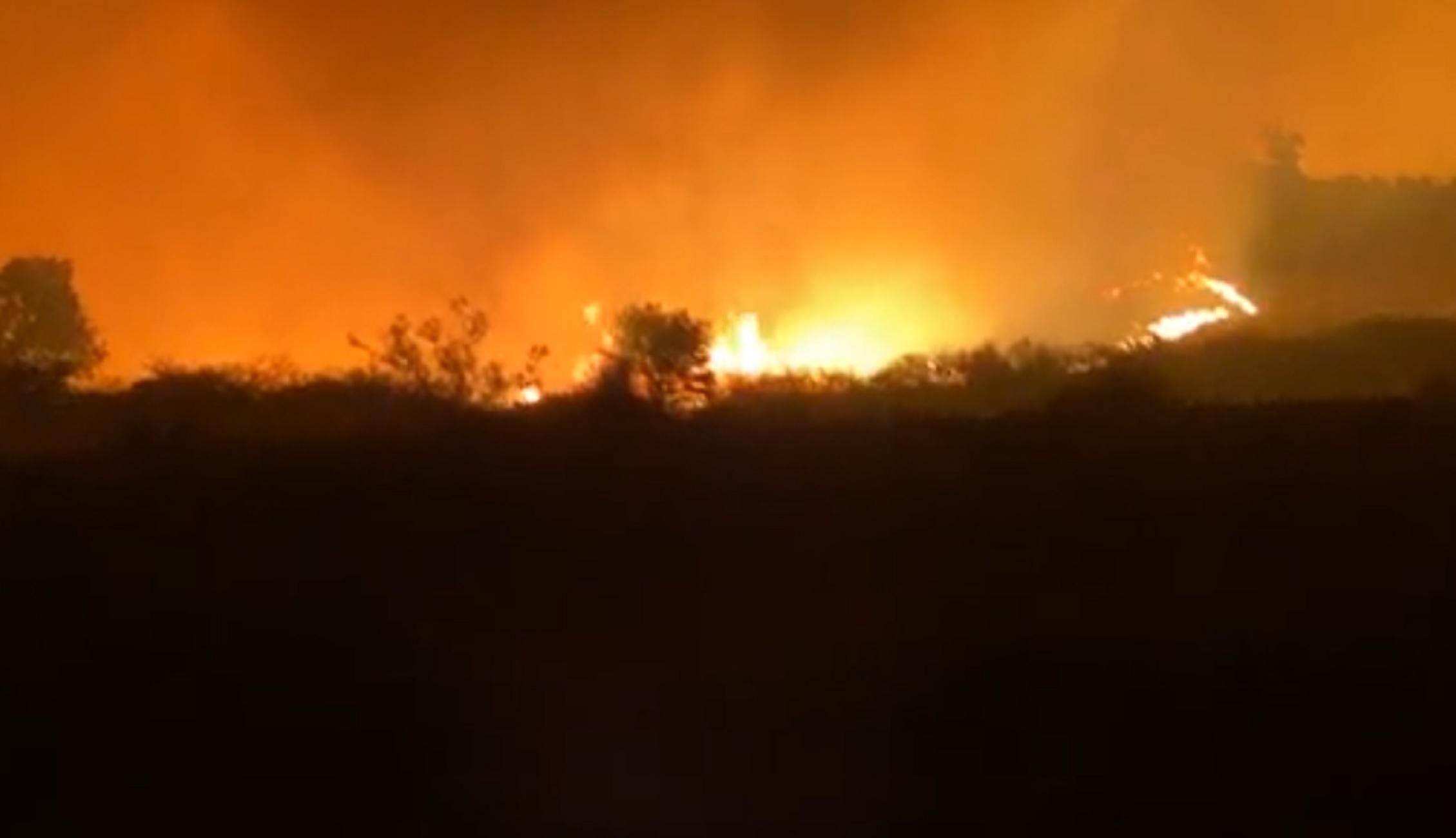 Μαίνεται η μεγάλη φωτιά σε δασική έκταση στην Αλεξανδρούπολη (video)