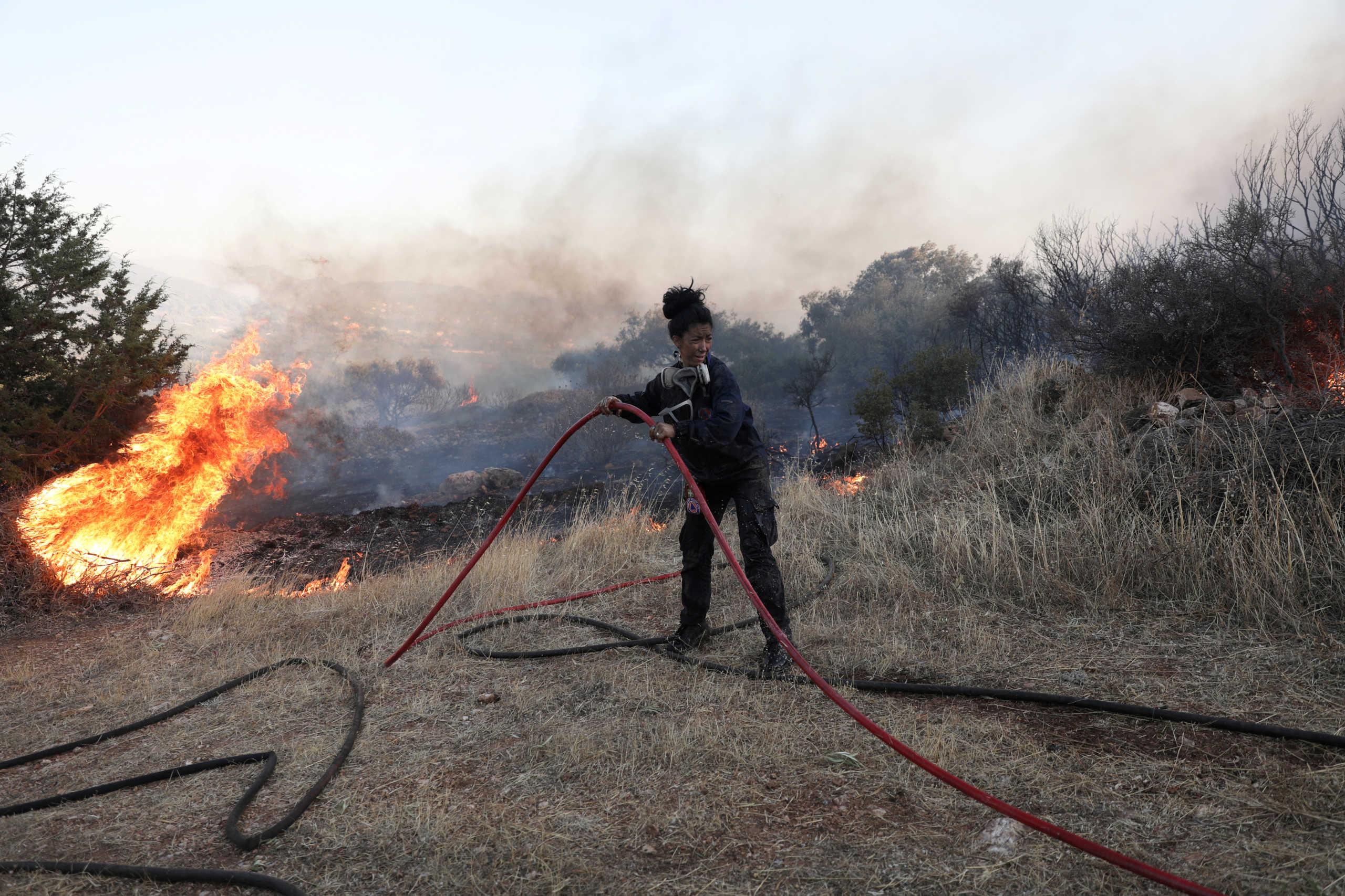 Κύπρος: Υπό έλεγχο η φωτιά στην επαρχία Λευκωσίας – Έκαψε ελαιώνα