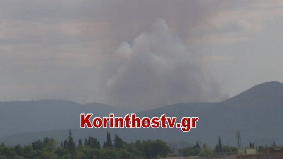Φωτιά σε δάσος της Κορινθίας