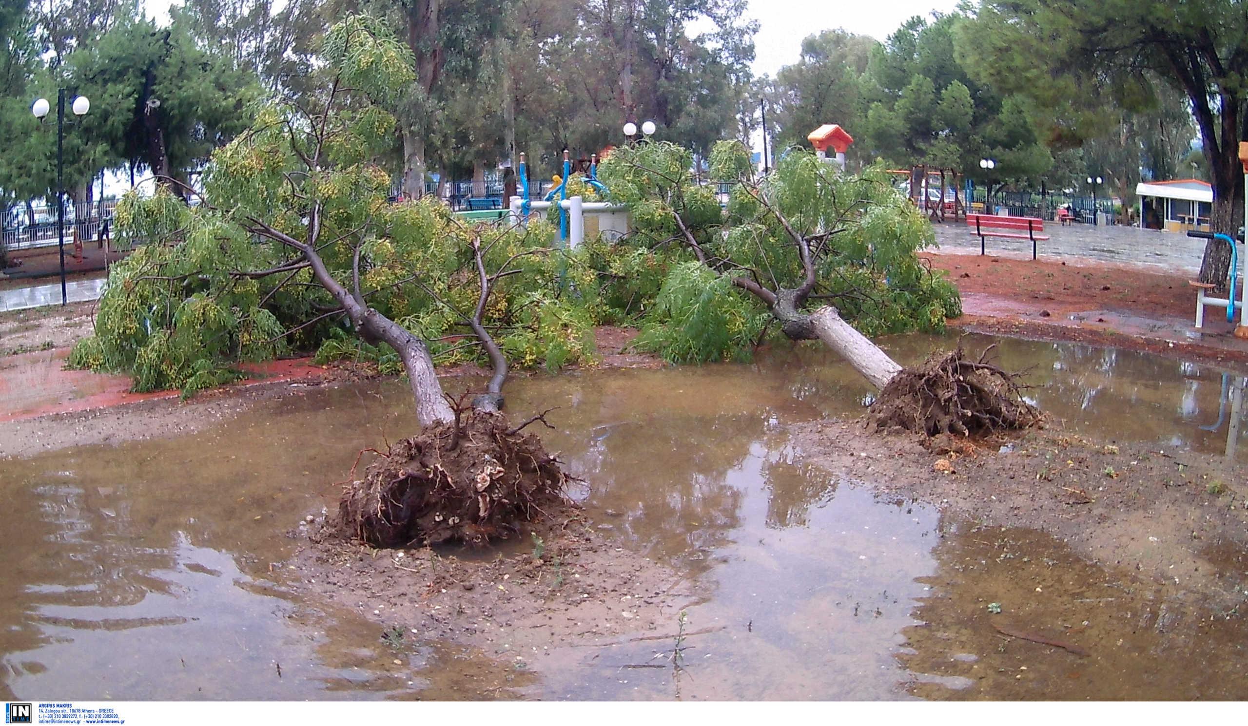 Καιρός: Θα δημιουργηθεί Μεσογειακός Κυκλώνας πάνω από την Ελλάδα; Τι λέει το Meteo