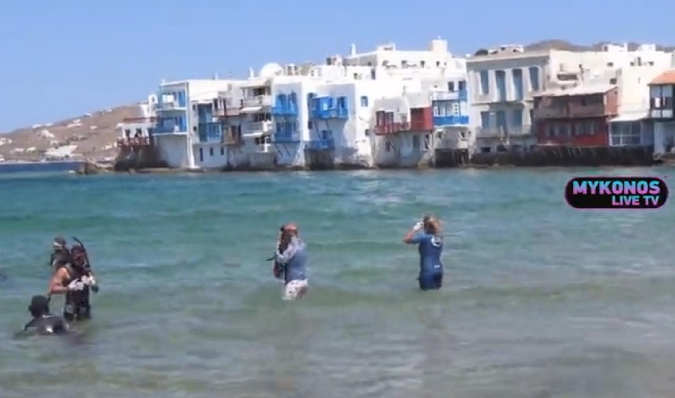 Μύκονος: Δείτε τι έκρυβε η θάλασσα στη Μικρή Βενετία! Έκπληκτοι ακόμα και οι δύτες (Βίντεο)
