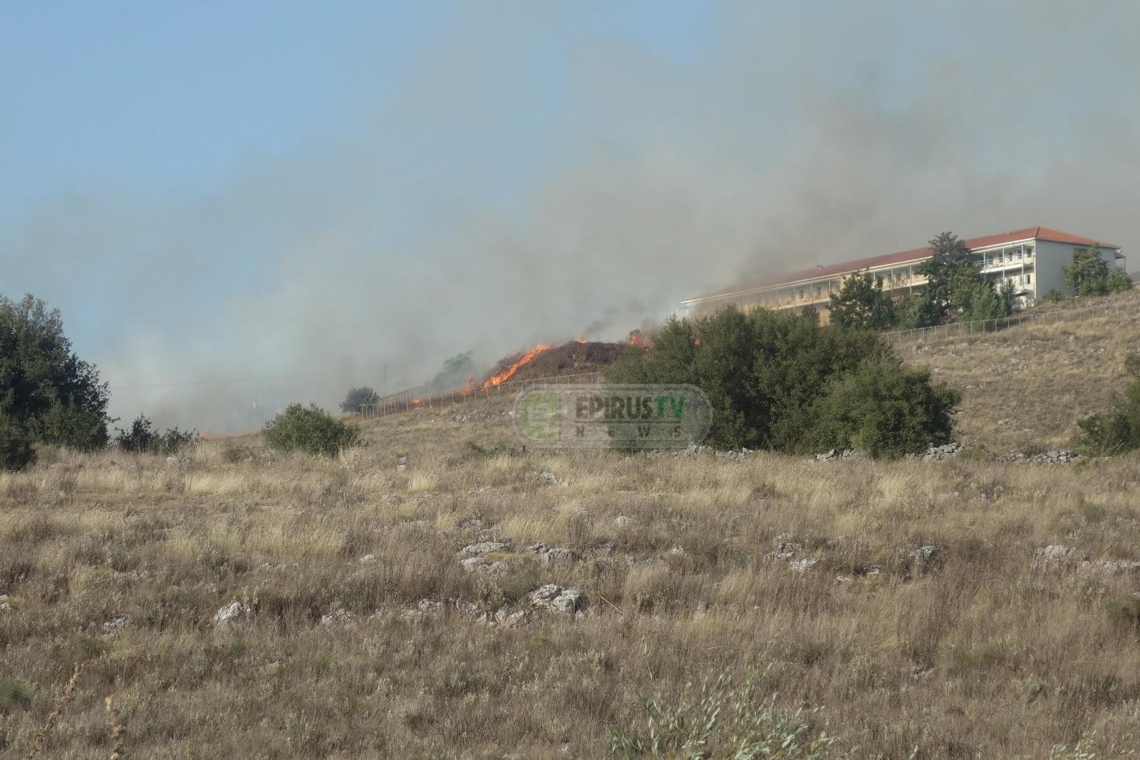Ήπειρος: Φωτιά δίπλα στο Άσυλο Ανιάτων!