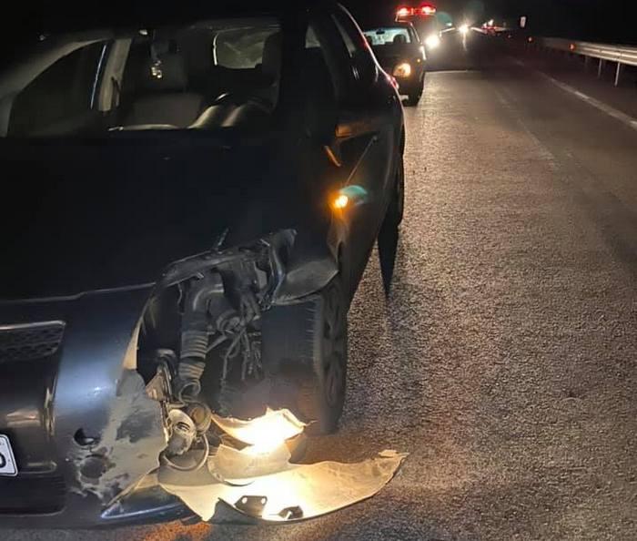 Εθνική Οδός: Κοπάδι από αγριογούρουνα διέλυσε αυτοκίνητο! Ο οδηγός βγήκε  και είδε αυτές τις εικόνες (Φωτό)