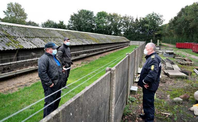 Κορονοϊός: Ρεκόρ ημερήσιων κρουσμάτων στη Δανία – Ετοιμάζεται για νέα μέτρα