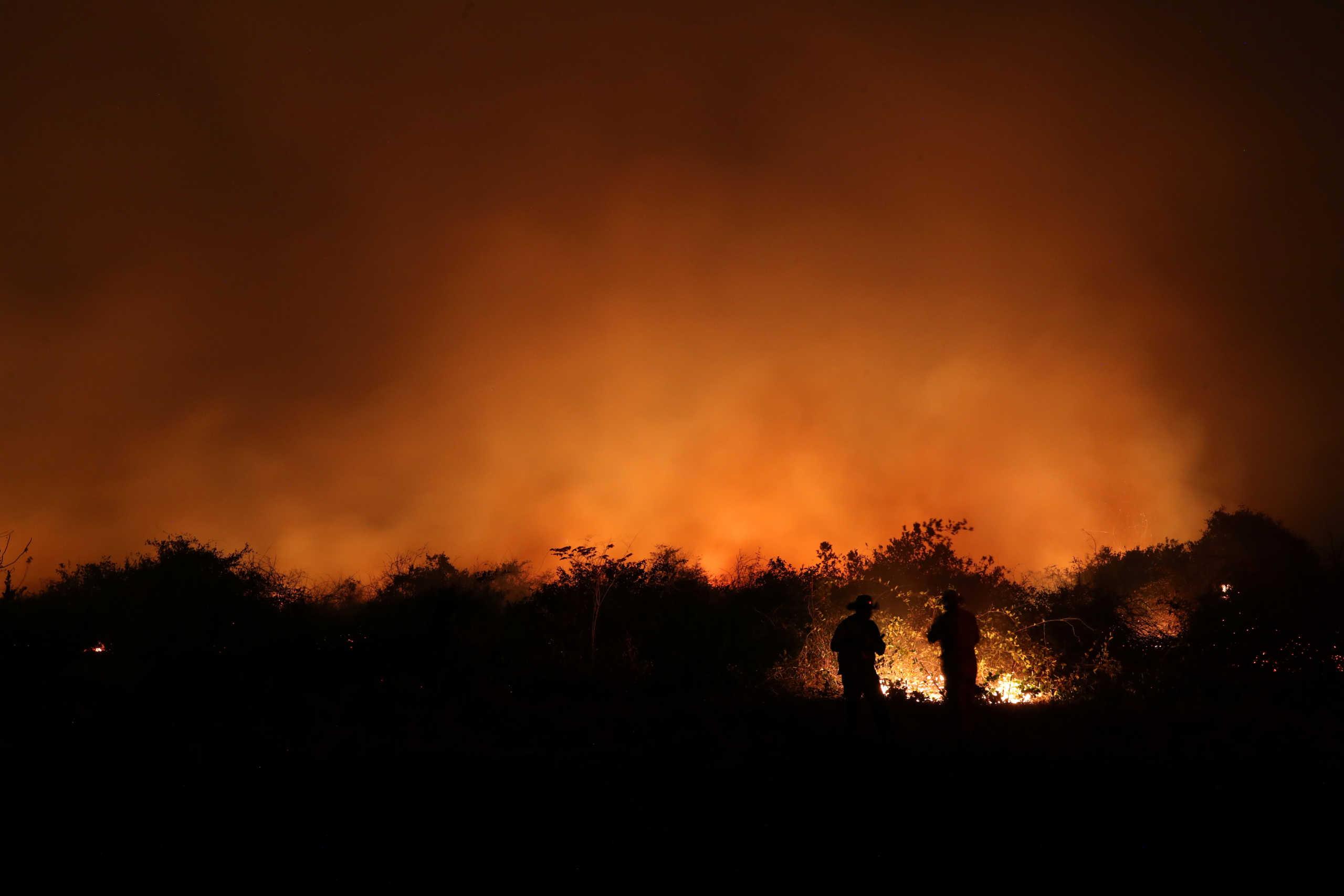 Βραζιλία: «Στάχτη» το δάσος της Αμαζονίας – Οι χειρότερες πυρκαγιές των τελευταίων δέκα χρόνων
