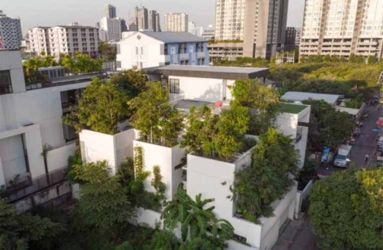 Forest House: Ένα σπίτι που μπορεί να φιλοξενήσει επτά άτομα και 120 δέντρα!
