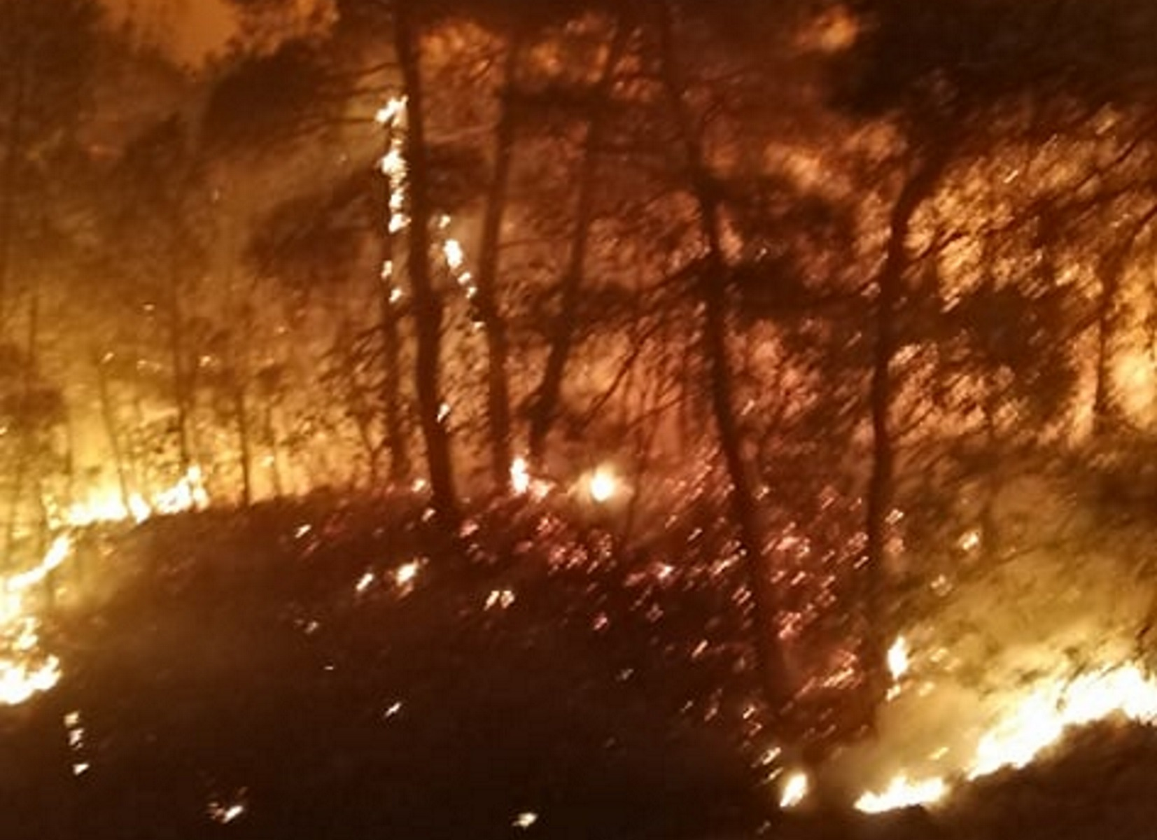 Δύσκολη νύχτα στο Σουφλί: Μεγάλη φωτιά σε δάσος (video)