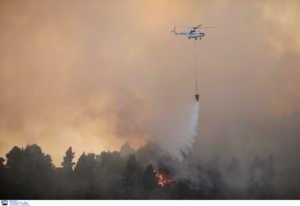 Μεγάλη φωτιά σε δασική περιοχή του Έβρου
