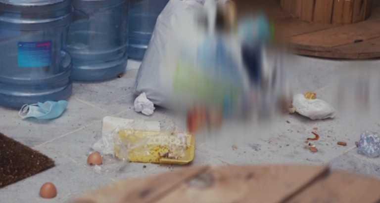 Χάος στο σπίτι του GNTM! Μυρμήγκια, βρωμιά και ακαταστασία [vid]