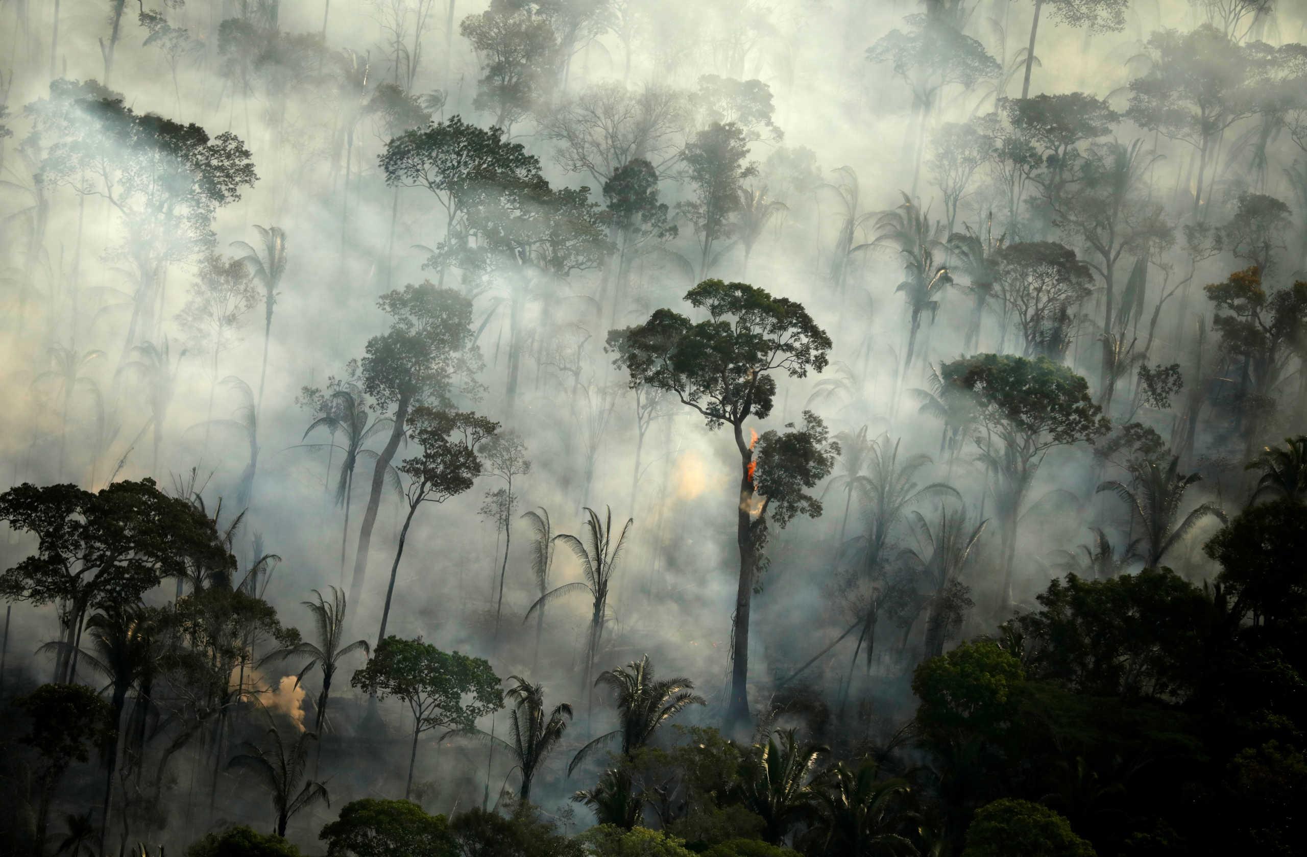 Αμαζόνιος: Ασύλληπτο! Πάνω από 17.000 φωτιές τον Οκτώβριο (pics)