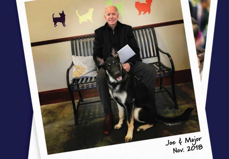 Τραυματίστηκε στον αστράγαλο ο Τζο Μπάιντεν παίζοντας με τον σκύλο του