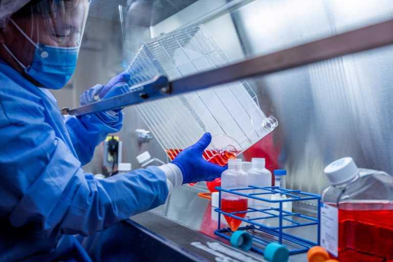 Κορονοϊός: Ο ΠΟΥ ξεκινά έρευνα για την προέλευση της πανδημίας