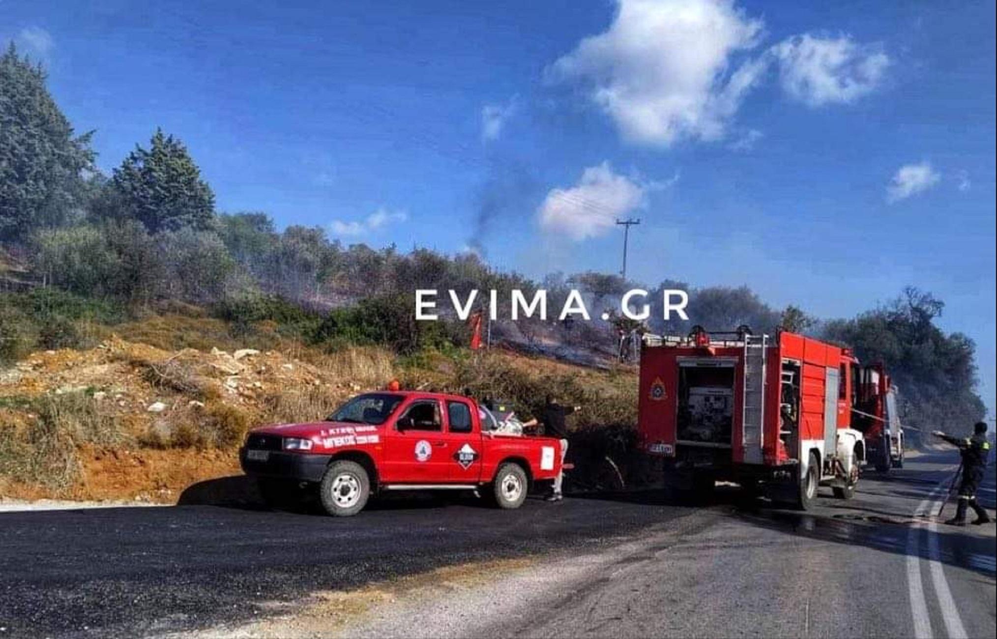 Εύβοια: Φωτιά κοντά σε κατοικημένη περιοχή! Μάχη με το χρόνο από πυροσβέστες και εθελοντές (Φωτό)