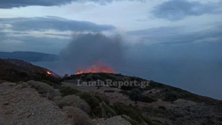 Μεγάλη φωτιά σε δύσβατο σημείο στην Εύβοια (video)