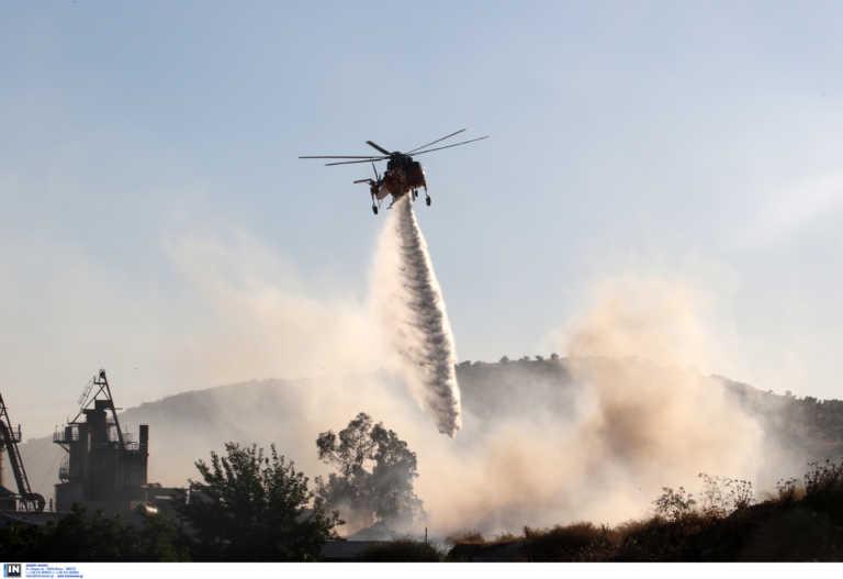 Φωτιά στην Κρήτη – Δάσος τυλίχτηκε στις φλόγες
