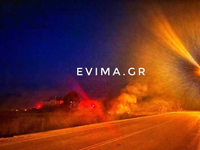 Μεγάλη φωτιά κοντά σε σπίτια έξω από το Αλιβέρι (pics)