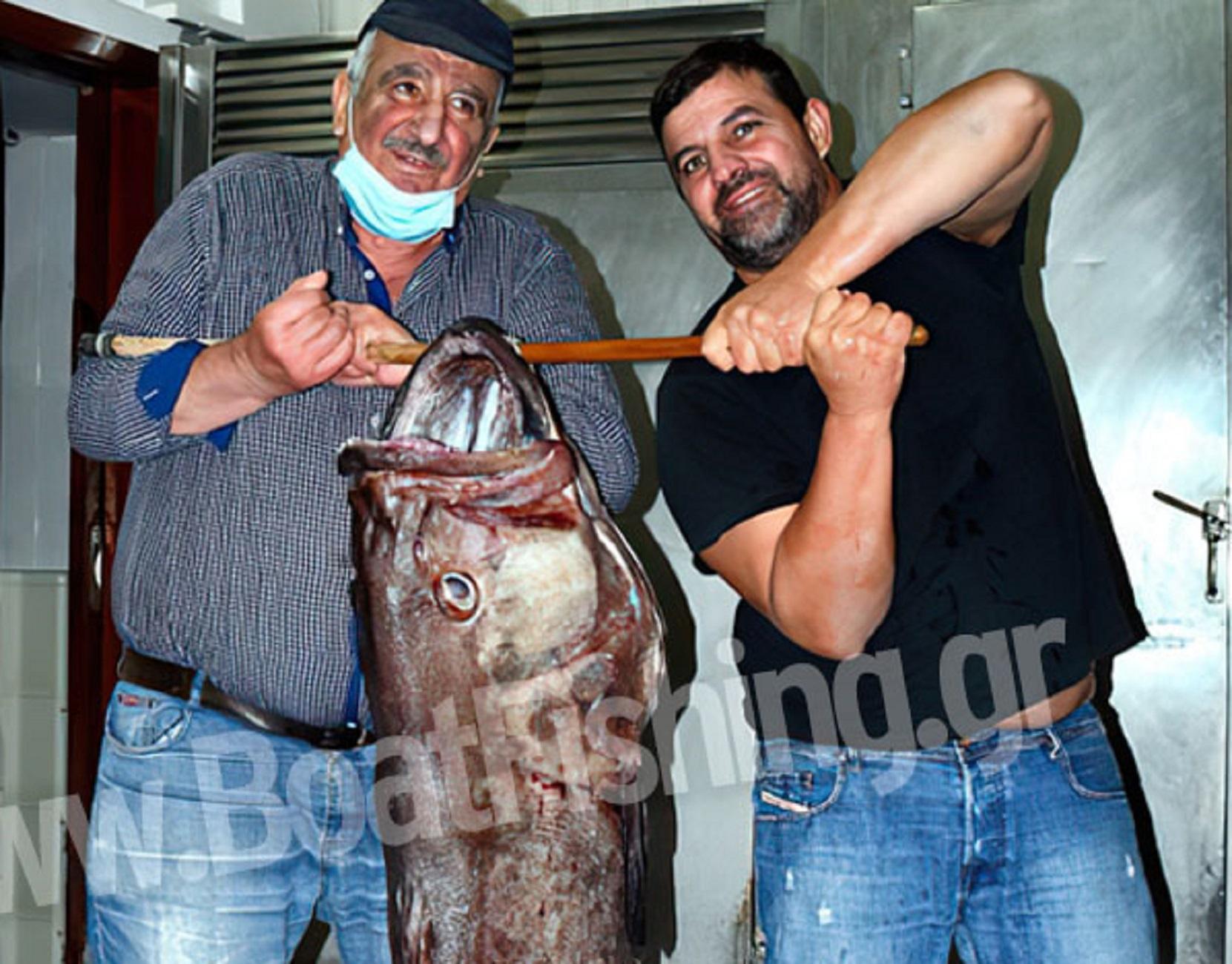 Εύβοια: Η ψαριά της ζωής τους! Πιάστηκε σε χοντρό παραγάδι και για να σηκωθεί χρειάστηκαν 4 χέρια (Φωτό)